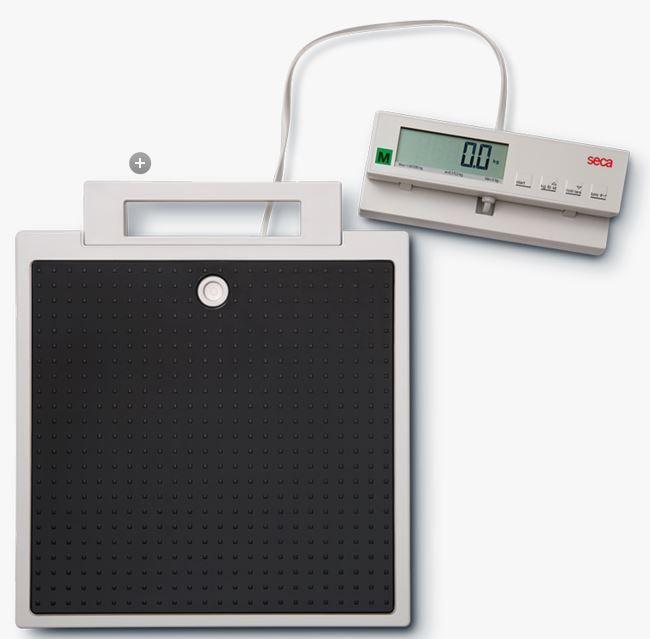 Floor Scales Medical Seca 899 Floor Scale With Remote